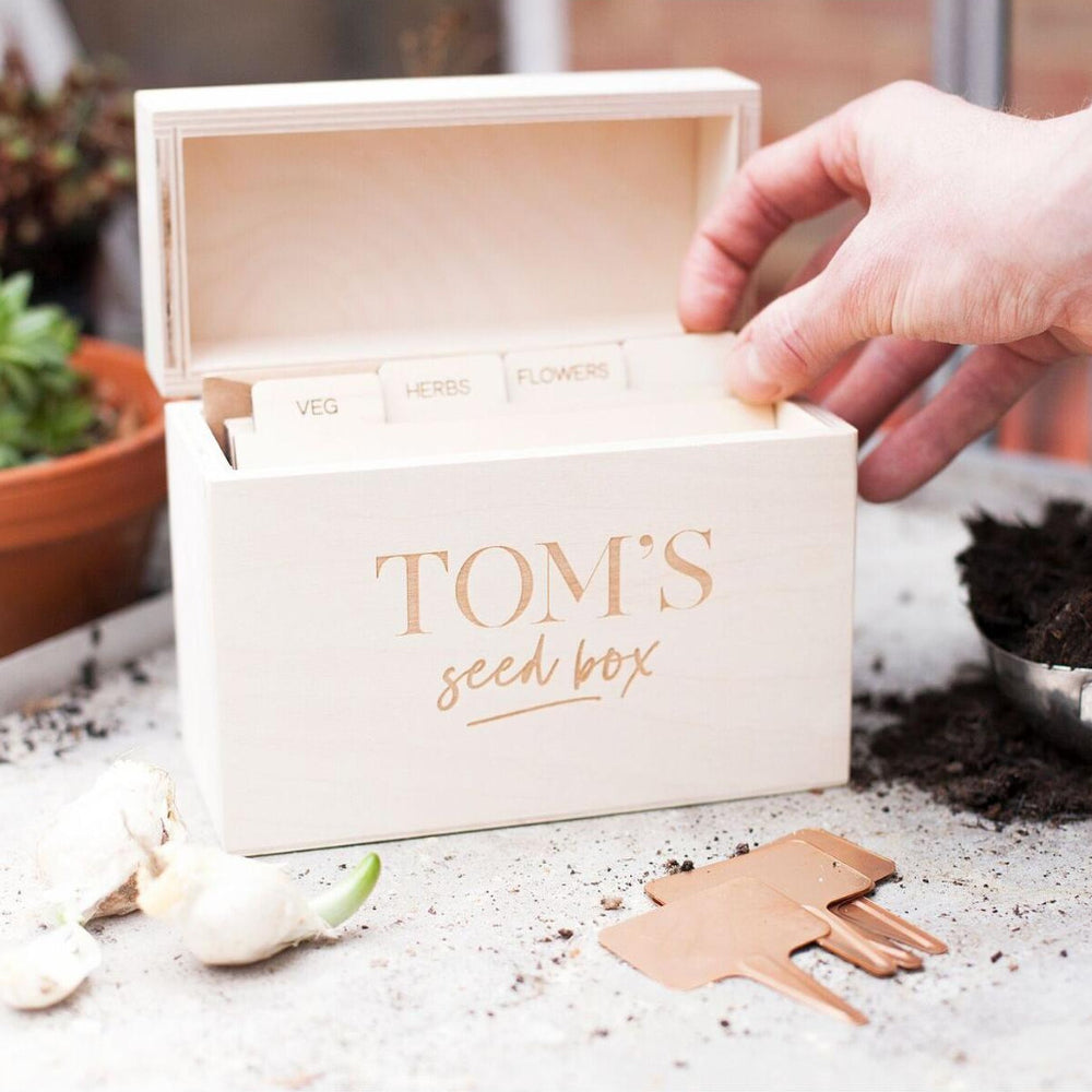 Modern Wooden Seed Box