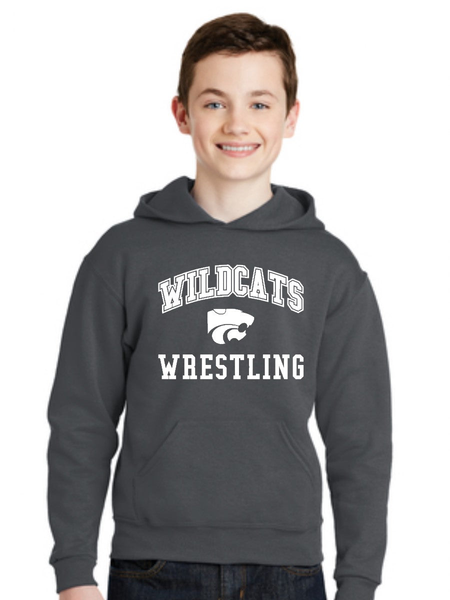 WILDCATS ARCH YOUTH HOODIE- 3 COLORS