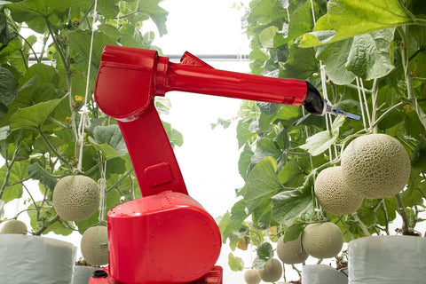 Photo of a robot in smart farming or agriculture for the aim of improving yield