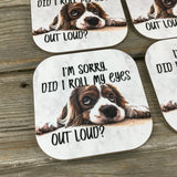 I'm sorry did I roll my eyes outloud? Coasters Set of 4