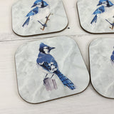 Blue Jay Drink Coasters Set of 4