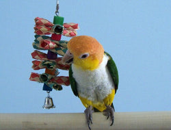 Small Shredalittle Small Bird Toy