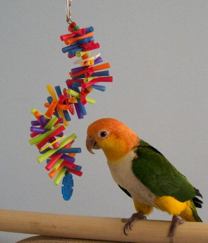 Small Silly Sid Straw Spiral Small Bird Toy