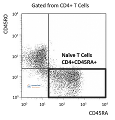human peripheral blood CD4+ CD45RA+ CD25- naive T cells
