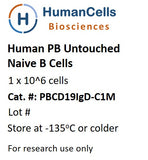Human Normal Peripheral Blood Untouched CD19+/IgD+ Naive B Cells