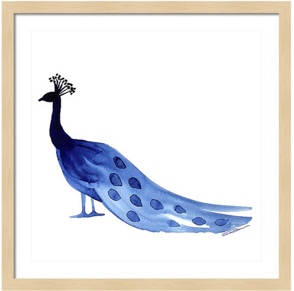 Proudly Peacock Animal Art Print