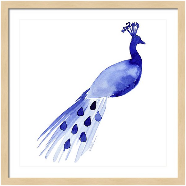 Peacock Animal Art Print