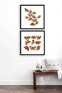 Monarch Butterflies Gallery Wall Set
