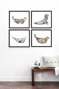 Seals & Sea Lion Gallery Wall Set
