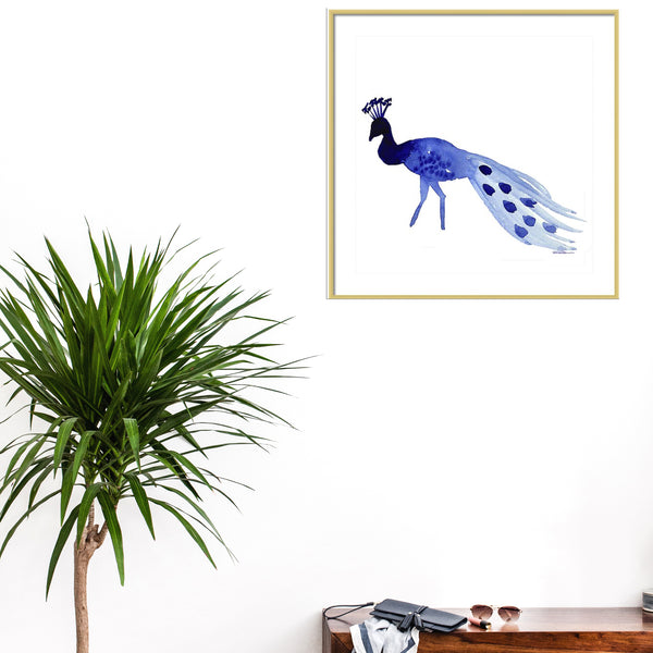 Strolling Peacock Animal Art Print