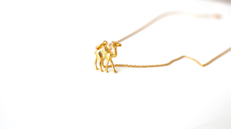 Camel - Gold - BACK SOON