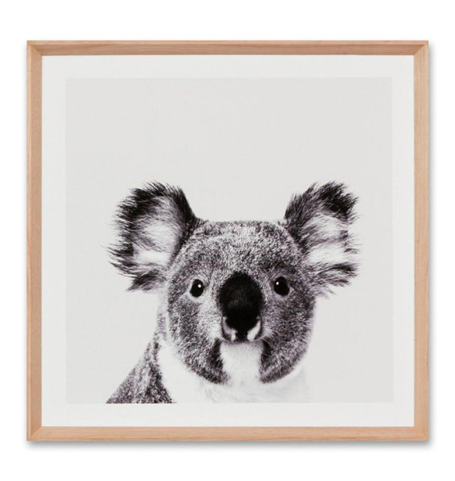 Koala Portrait Small Wall Art Print