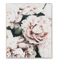 Light Bloom 1 Canvas Wall Art Print