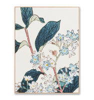 Perennial Woodblock 1 Framed Canvas Wall Art Print