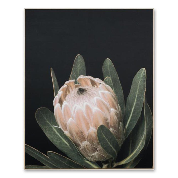 Australian Light Bloom Wall Art Canvas