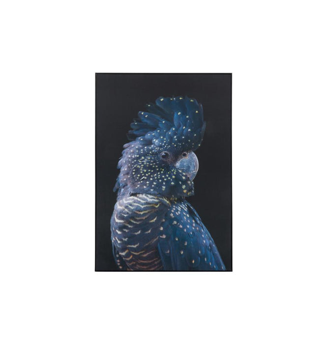 Black Cockatoo Framed Canvas Wall Art Print