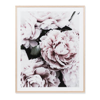 Light Bloom 1 Print Wall Art Print