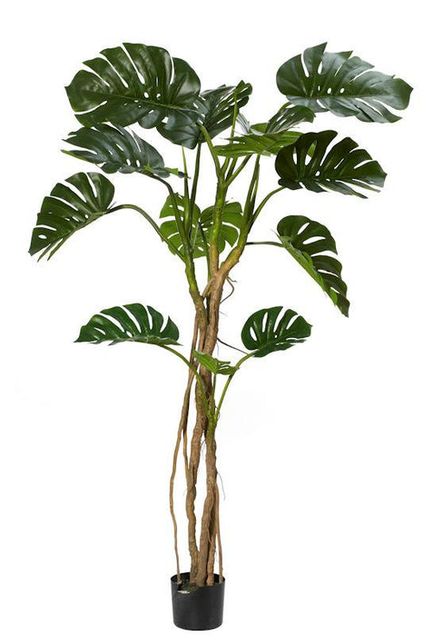Monsteria Vine Artificial Plant