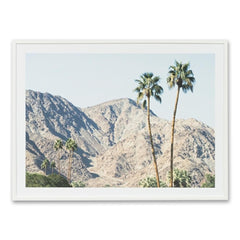 Palm Hills Wall Art Print