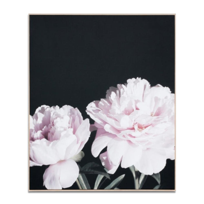 Peony Night Wall Art Print Canvas