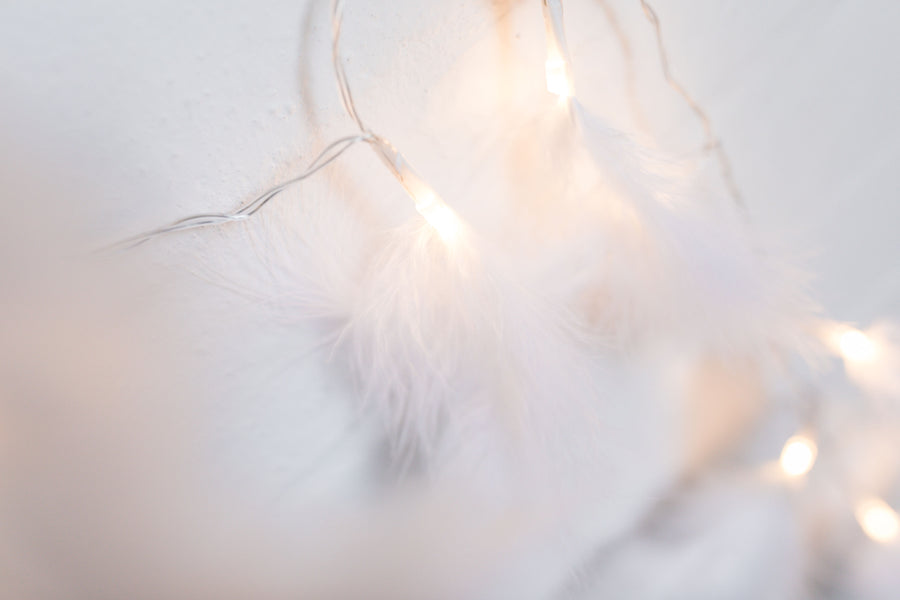 White Feather Lights