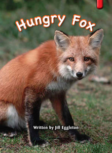 Key Links Red (Book 13, Level 4): Hungry Fox