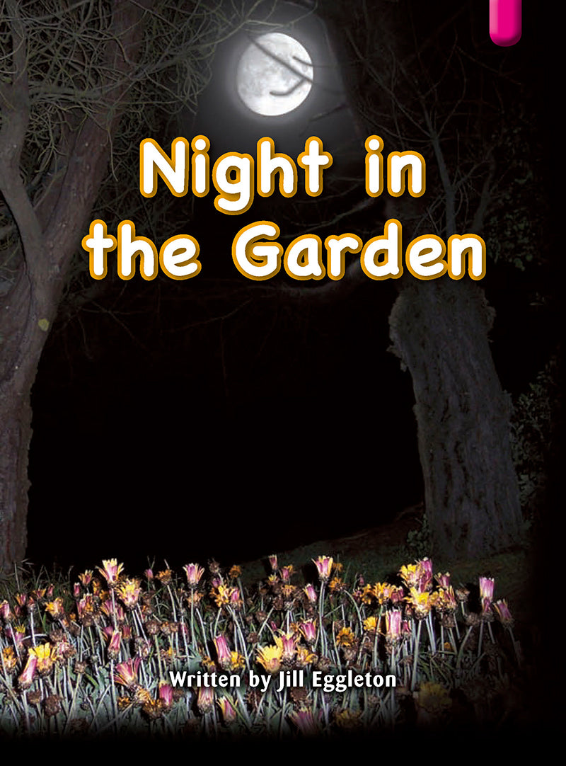 Key Links Magenta (Book 13, Level 2): Night in the Garden