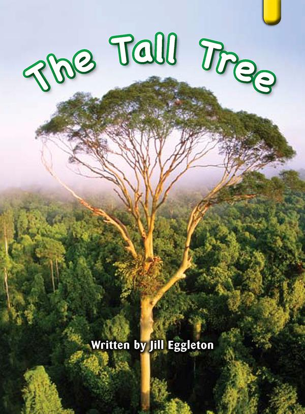 Key Links Yellow Book 13, Level 7: The Tall Tree