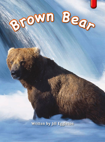 Key Links Red (Book 14, Level 4): Brown Bear