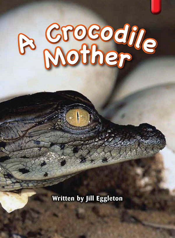 Key Links Red (Book 16, Level 4): A Crocodile Mother