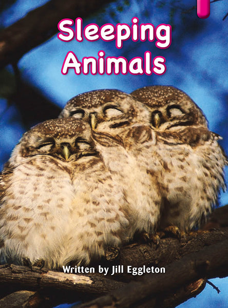 Key Links Magenta (Book 4, Level 1): Sleeping Animals
