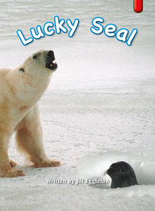 Key Links Red (Book 5, Level 3): Lucky Seal