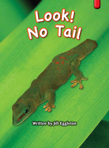 Key Links Red (Book 6, Level 3): Look! No Tail