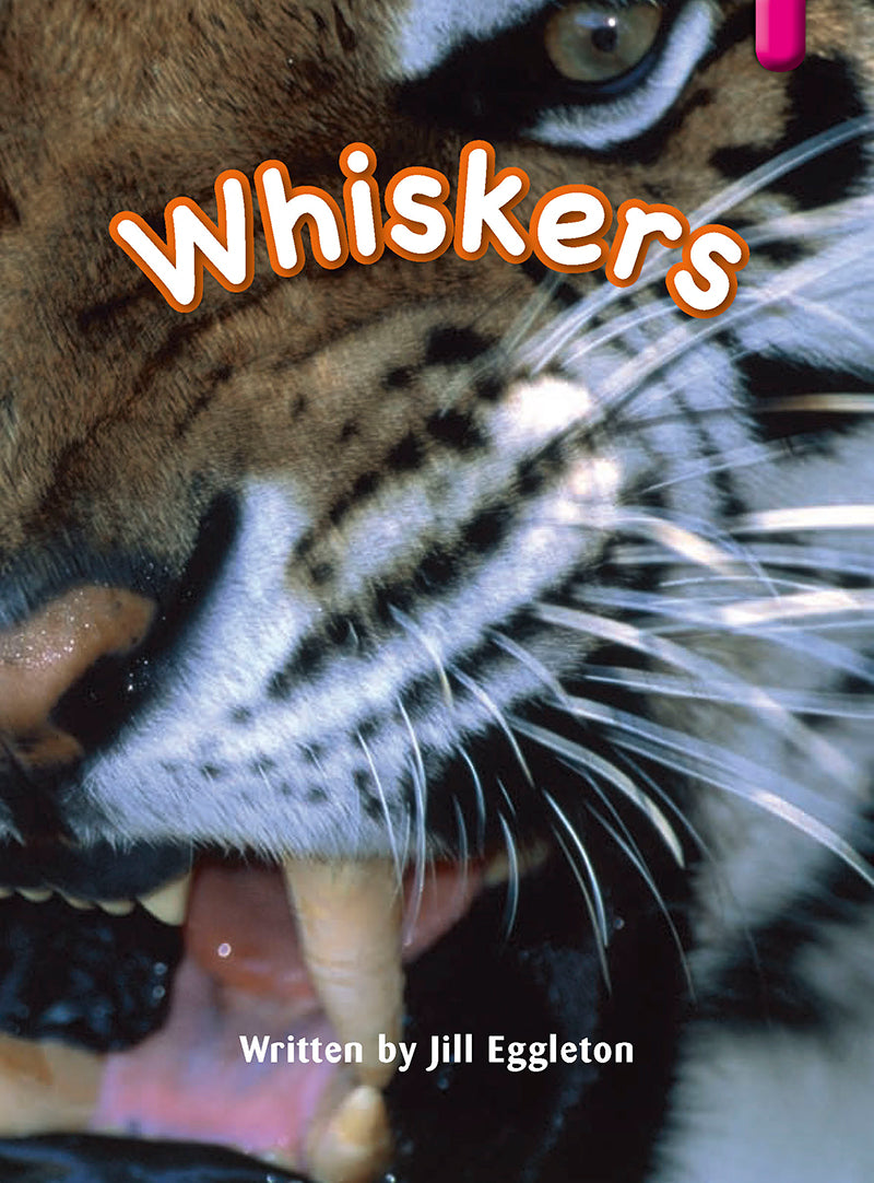 Key Links Magenta (Book 7, Level 1): Whiskers