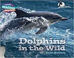 Cambridge RA Explorers Band: Dolphins in the Wild