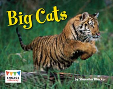 Engage Literacy L14: Big Cats