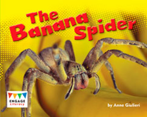 Engage Literacy L10: The Banana Spider