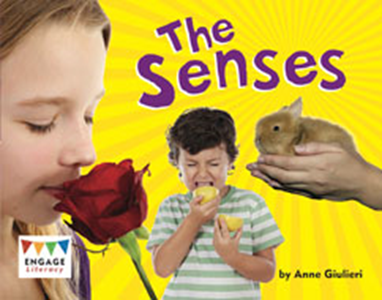 Engage Literacy L20: The Senses