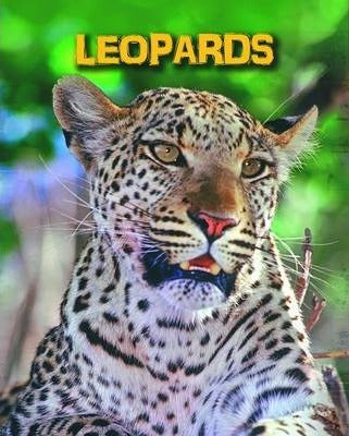 Leopards - Living in the Wild: Big Cats