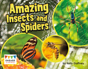 Engage Literacy L18: Amazing Insects and Spiders