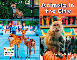 Engage Literacy L17: Animals in the City