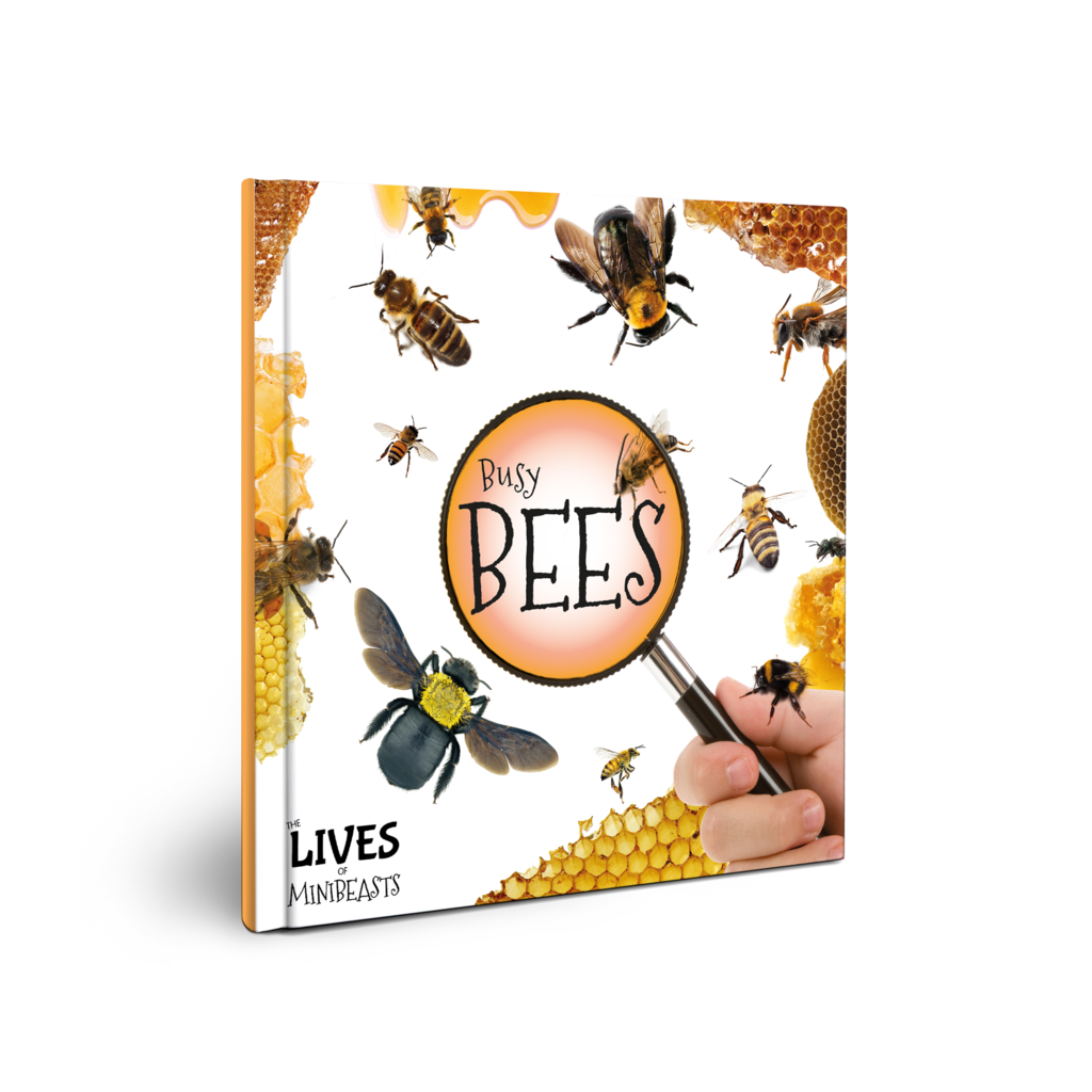 Lives of Minibeasts: Busy Bees