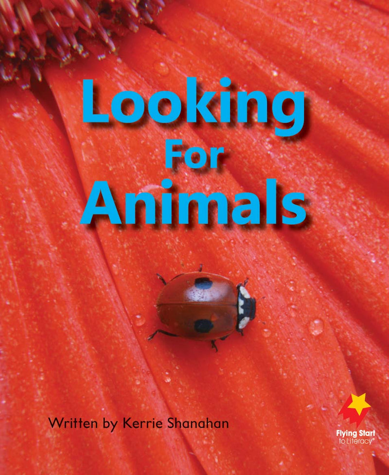FS Level 4: Looking For Animals