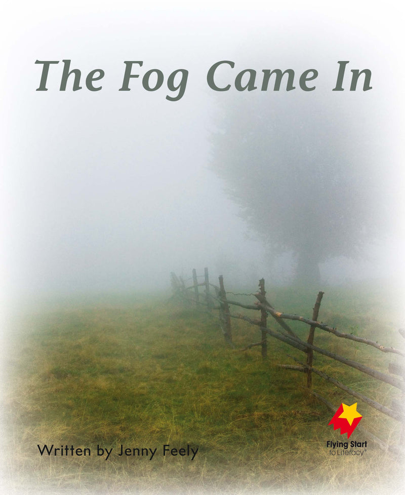 FS Level 4: The Fog Came In