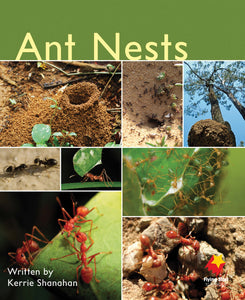 FS Level 5: Ant Nests