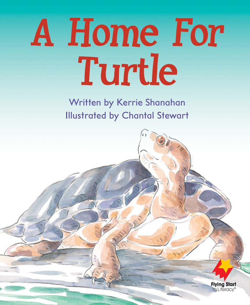 FS Level 6: A Home For Turtle