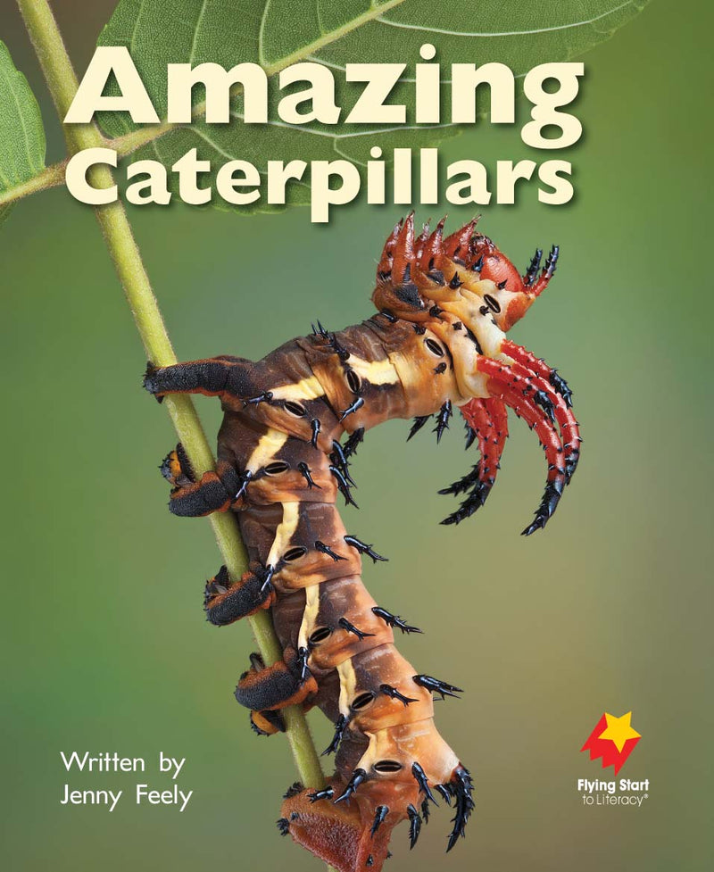 FS Level 9: Amazing Caterpillars