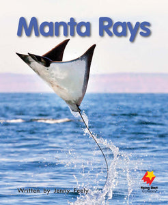 FS Level 12: Manta Rays