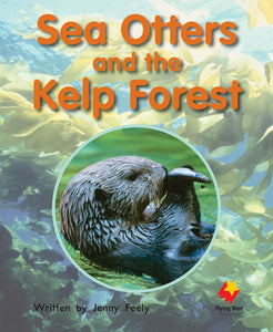 FS Level 14: Sea Otters and the Kelp Forest