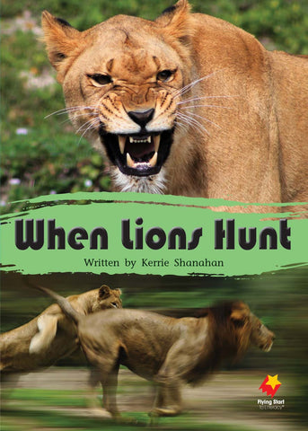 FS Level 15: When Lions Hunt